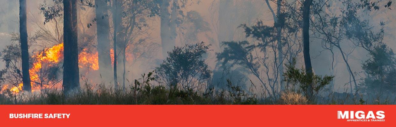 Bushfire Safety